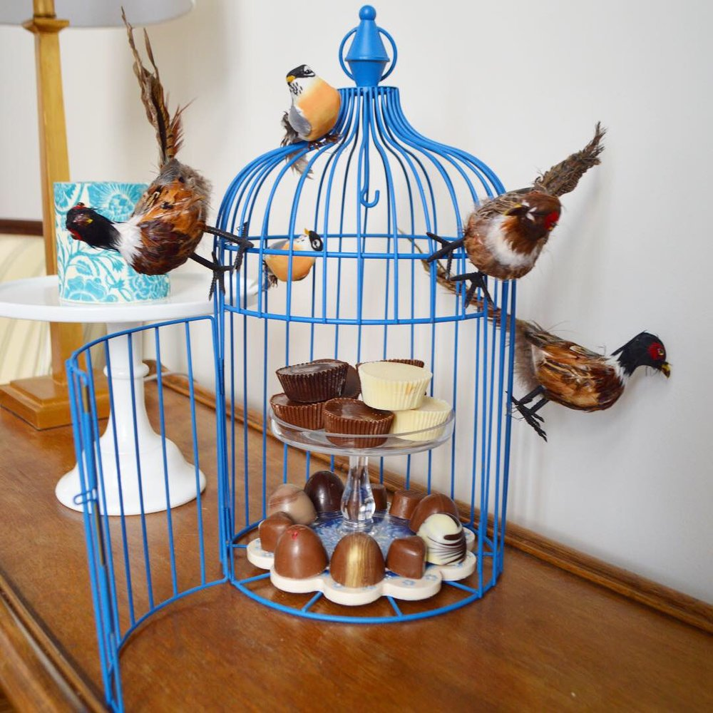 Birdcage full of chocolate