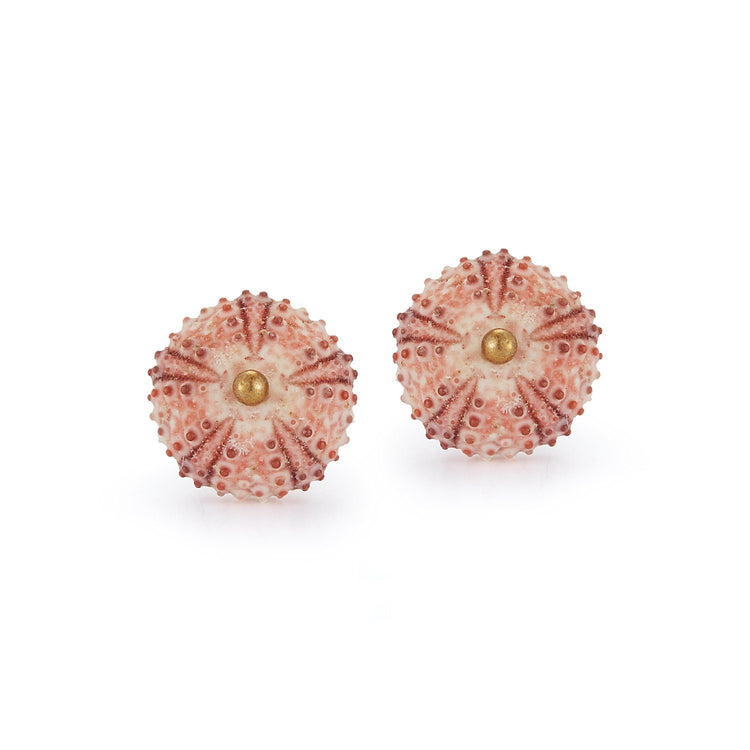 Sea Urchin Earrings - Pink