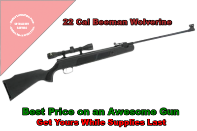 Beeman Wolverine Air Rifle .22 With Scope,  Quality Break Barrel, Brand New