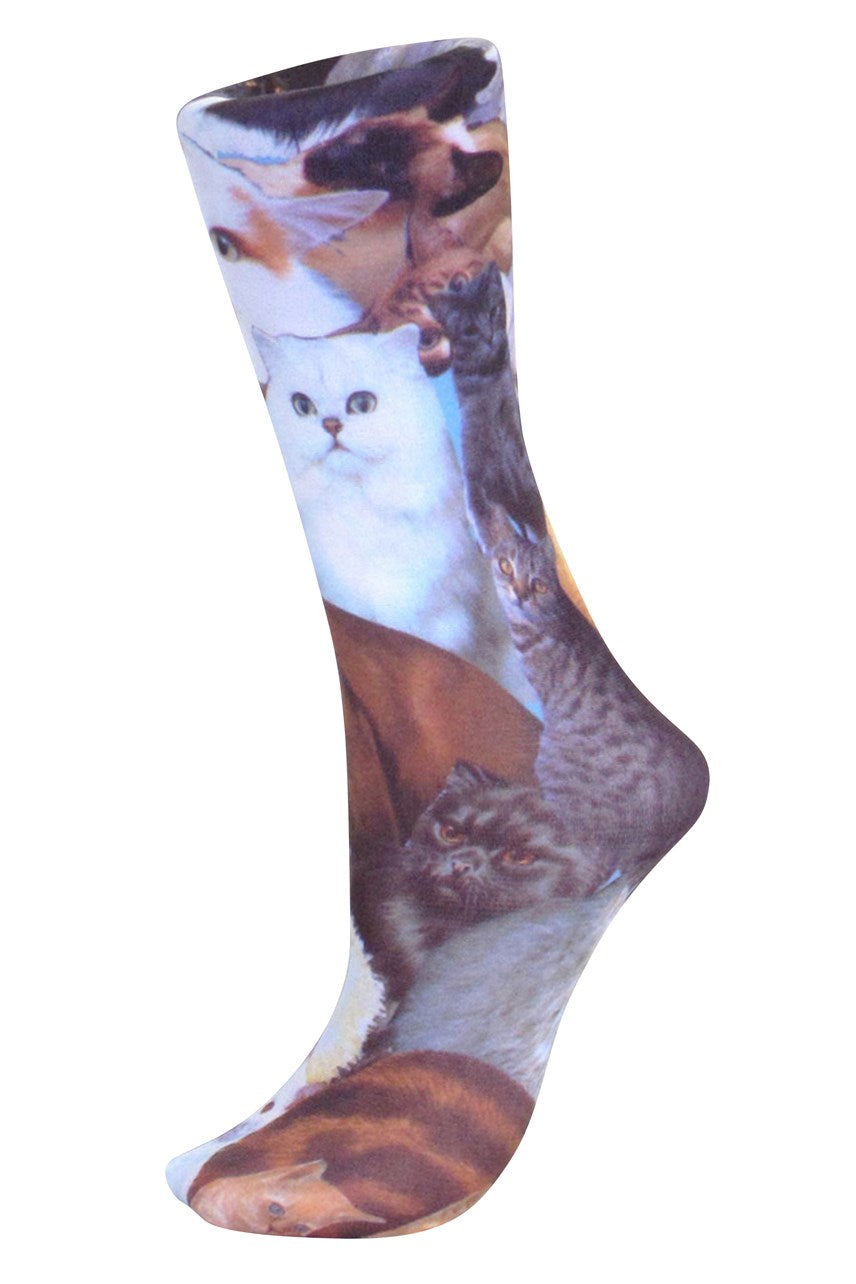Celeste Stein Kitty Trouser Sock