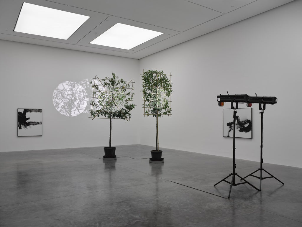 Cerith Wyn Evans White Cube