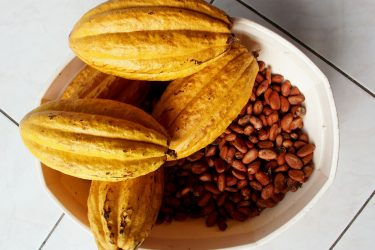 Cacao VS Cocoa, What's The Difference? Which Is Better?