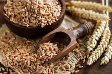 Spelt – The Healthy Ancient Grain