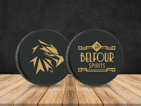 Official Hockey Puck (set of 2)