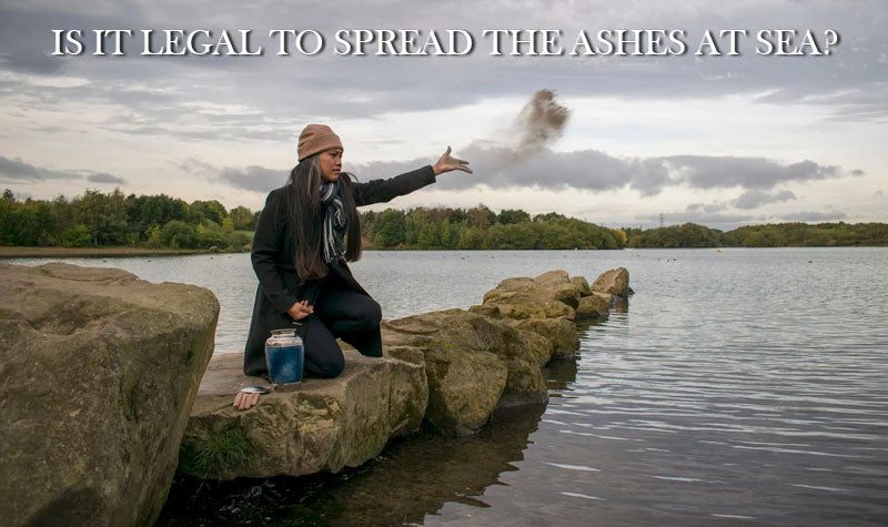 is it legal to spread the ashes at sea in Arizona
