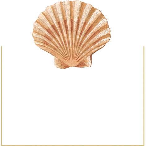Seaside Shell - Place Cards