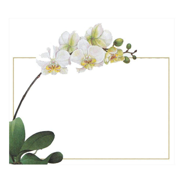 Orchid - Place Cards