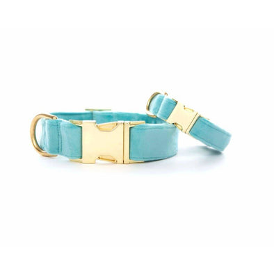 Robin's Egg Blue Velvet Dog Collar - Large