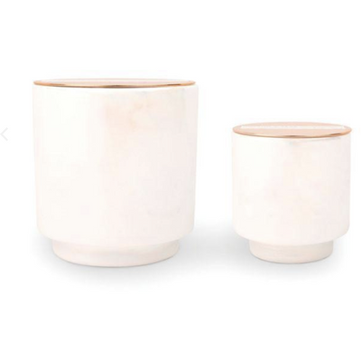 Glow Candle - 5 oz Cotton & Teak - Opal and Olive
