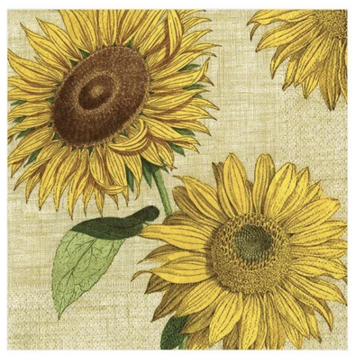 In this Design: Beautiful and bright sunflowers, inspired by those in the New York Botanical Garden, are set against a linen textured backdrop.