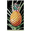 In this Design: Pineapples are known to be a symbol of welcome and hospitality. This pineapple design possesses a clearly classic style but is modernized through its bold colors.