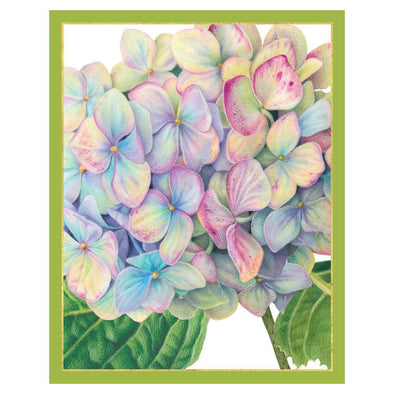 Hydrangea - Bridge Tallies Pkg 12 In-Gallery