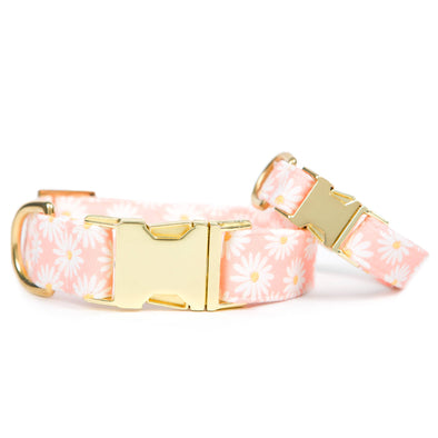 Pink Daisies Dog Collar - Medium