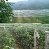Hole Mesh Multiple Sizes Plastic Anti Bird, Pest