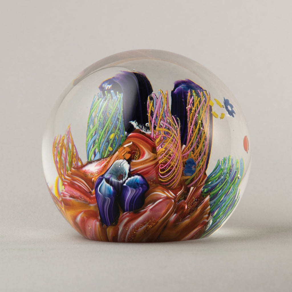 Caribbean Reef Paperweight
