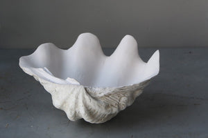 24cm  Resin stone giant clam with sun bleached base and matte natural interior.