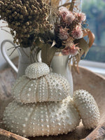 White Faux Stacked Sea Urchin sculpture - Set of four.