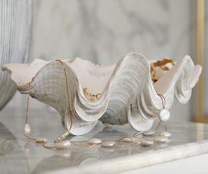 23cm  resin stone Ruffled giant clam