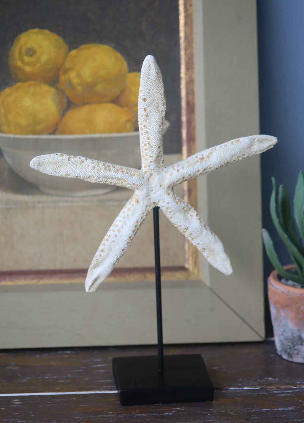 Starfish sculpture on a black stand