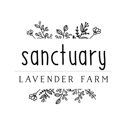 Sanctuary Lavender Farm