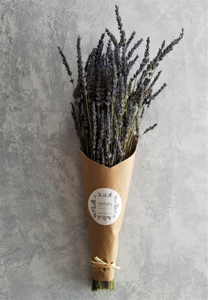 French Lavender Bunch