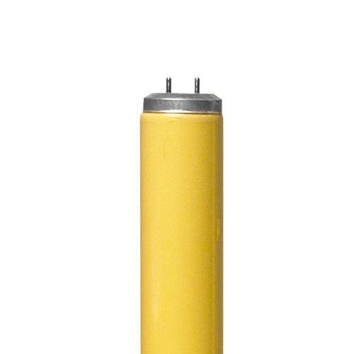 T-8 Non-UV Gold Fluorescent Tube 30w - 36in