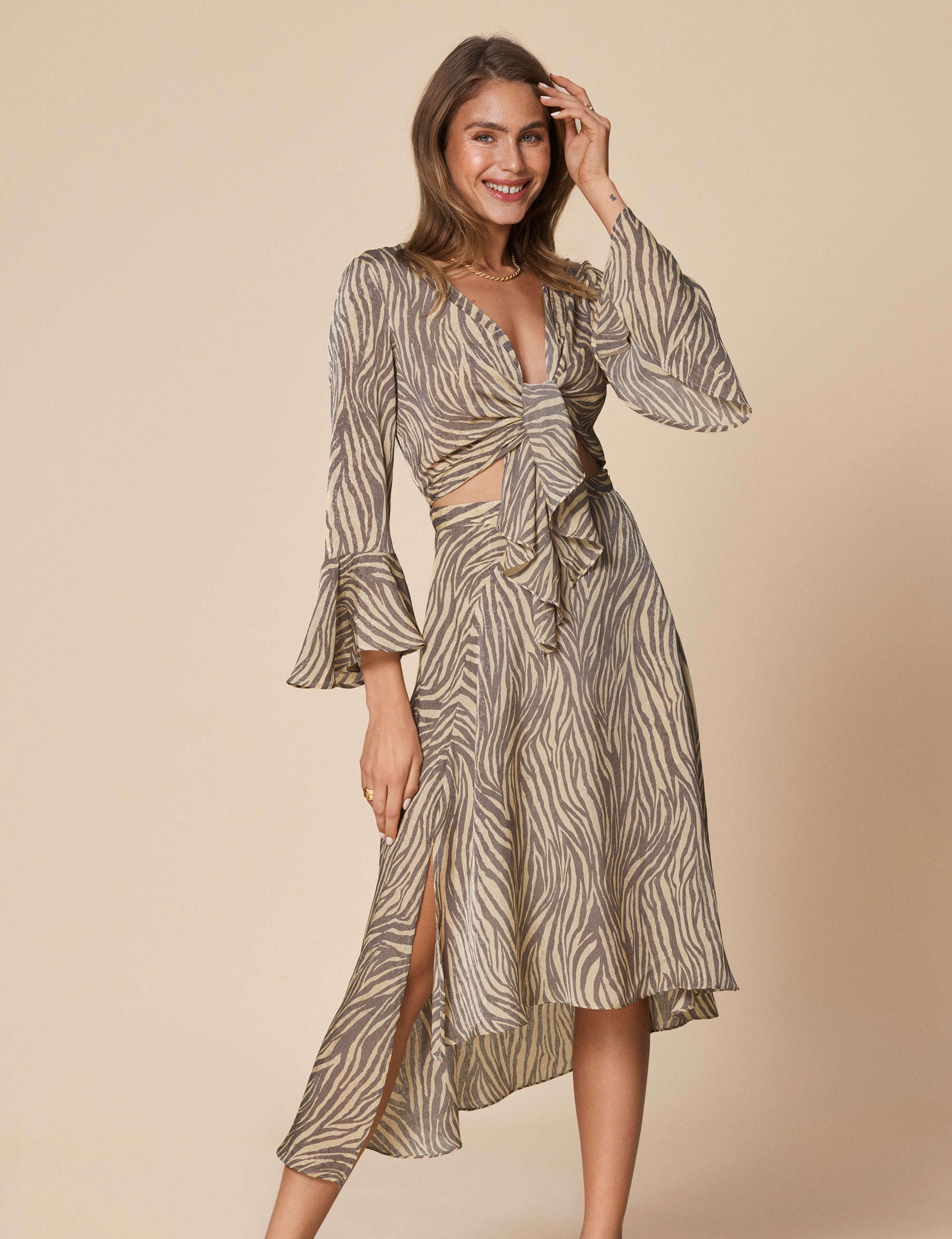 Riviera Dress Zebra