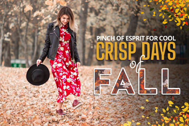 PINCH OF ESPRIT FOR COOL, CRISP DAYS OF FALL
