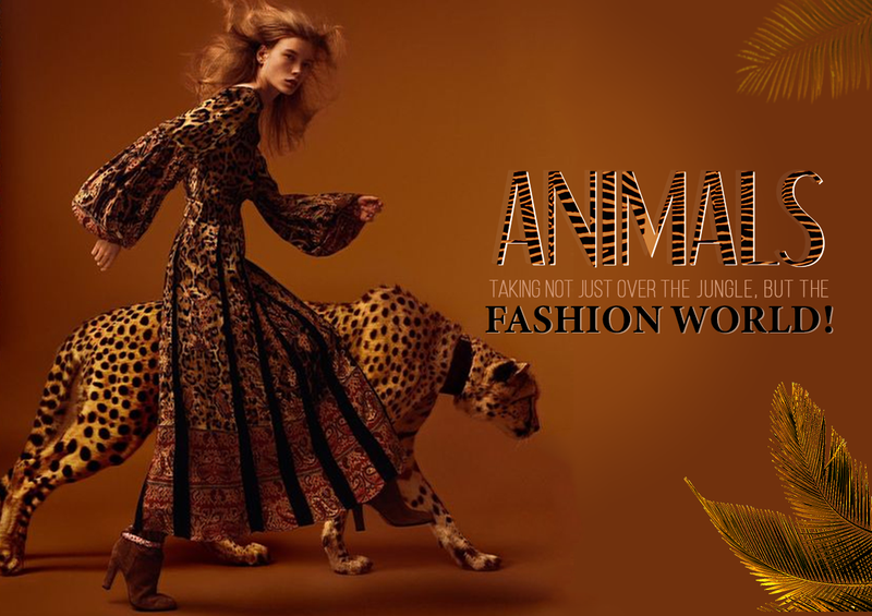 Animals taking not just over the jungle, but the fashion world!