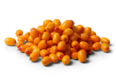 What are Sea Buckthorn Berries?