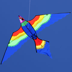 Windspeed Single Line Kite Lorikeet - WS883