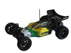RIVERHOBBY Bullet 1:10 Buggy 2WD RTR with 2.4Ghz Radio, Nimh Battery and Charger - RH-2011