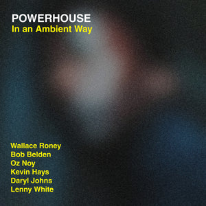 In An Ambient Way (Powerhouse) [WAV DOWNLOAD]