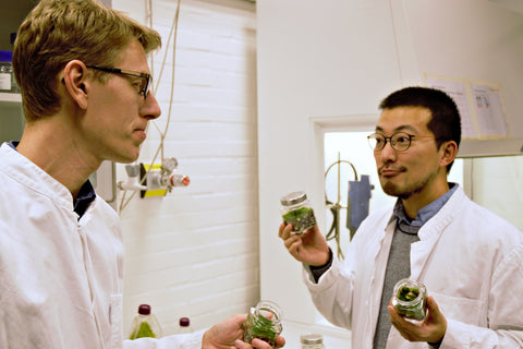 Discussing the moss in the lab
