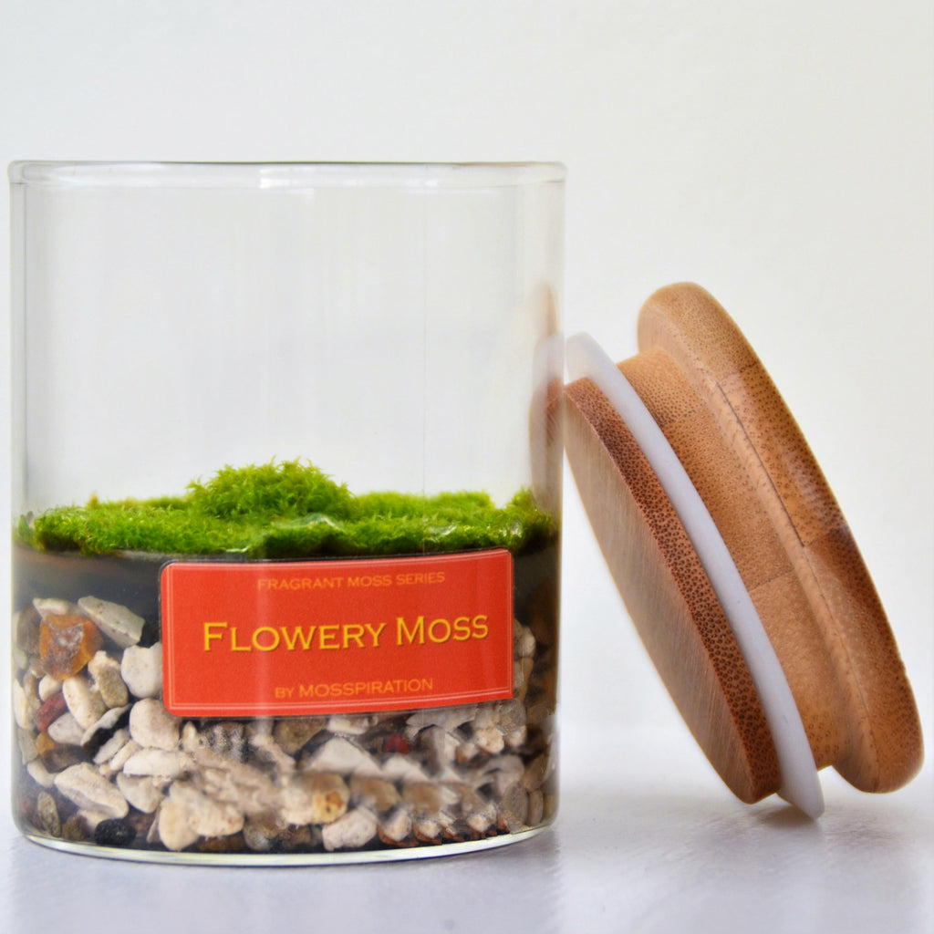 Home decoration with moss with fragrance