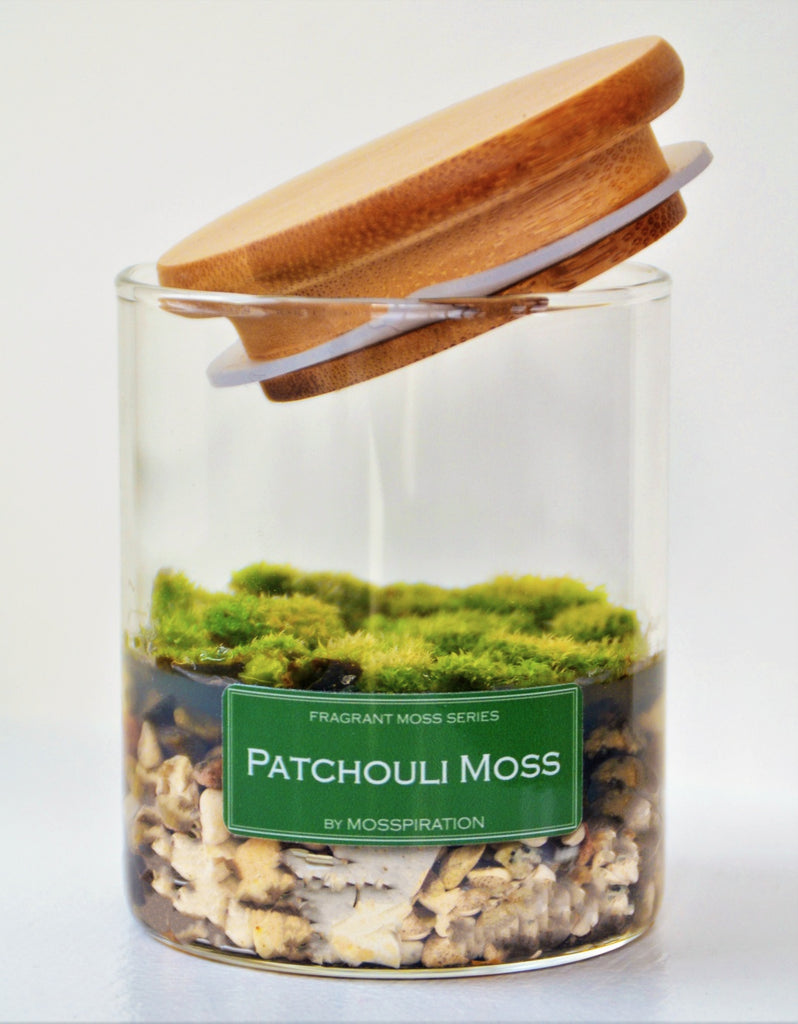 Fragrant moss in glass with wooden lid