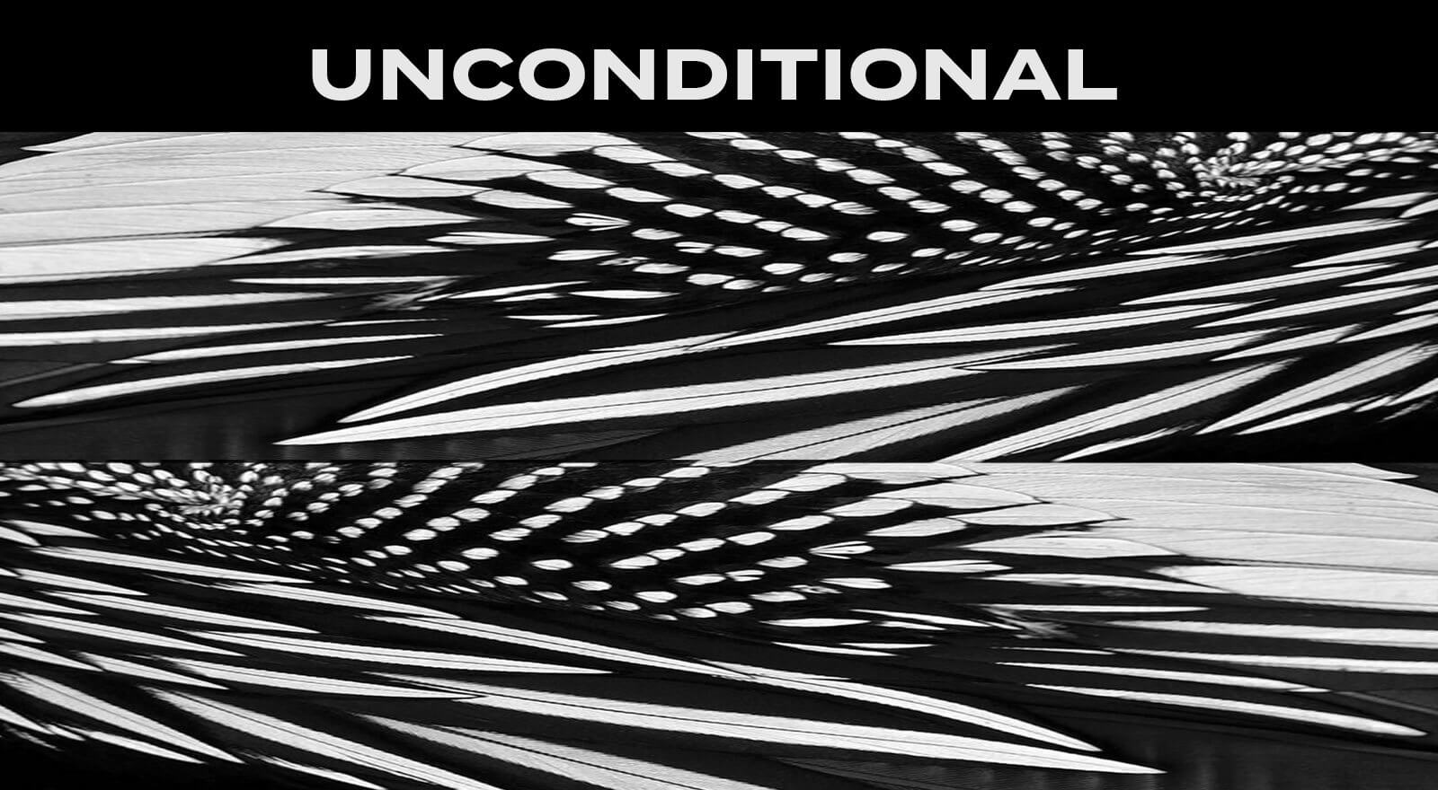 D/Luca Feather Black Unconditional - Artwork