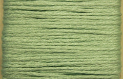Splendor # 1013 Pale Sea Green