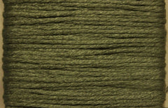 Splendor # 1063 Fern Green