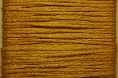 Splendor # 1107 Medium Goldenrod