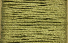 Splendor # 1123 Very Pale Fem Green