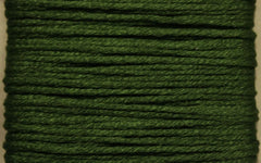 Splendor # 1140 Dark Apple Green