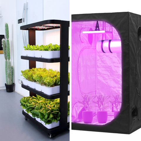 Indoor Hydroponics Systems
