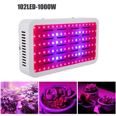 Grow Lights, Pumps & Accessories