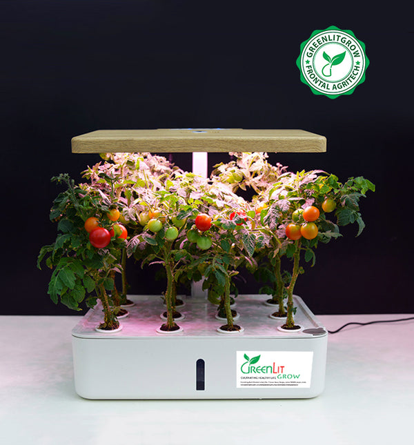 GreenLit Neo - Smart Automation Home Hydroponics Kit - GreenLit Grow
