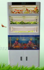 Smarter planter indoor hydroponics & Aquaponics with fish tank