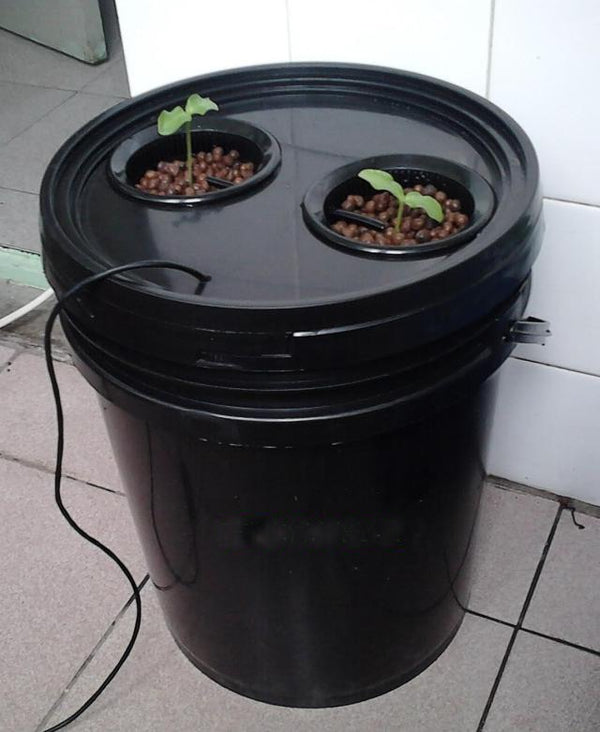 10L Bucket Aeroponics pot with 2 net cup  (Black) - GreenLit Grow