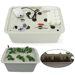11 Plant Site Hydroponic Indoor Garden Cabinet Box Grow Kit