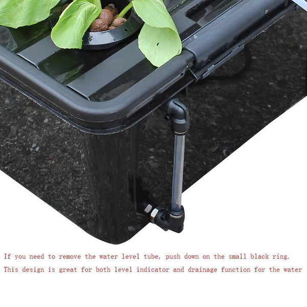 Complete 3 in 1  Big DWC bucket Hydroponics system - GreenLit Grow