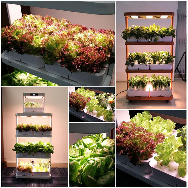 GreenLit Avatar900 Smart 120W Eco-Kitchen Home Gardening Indoor Hydroponic System - GreenLit Grow